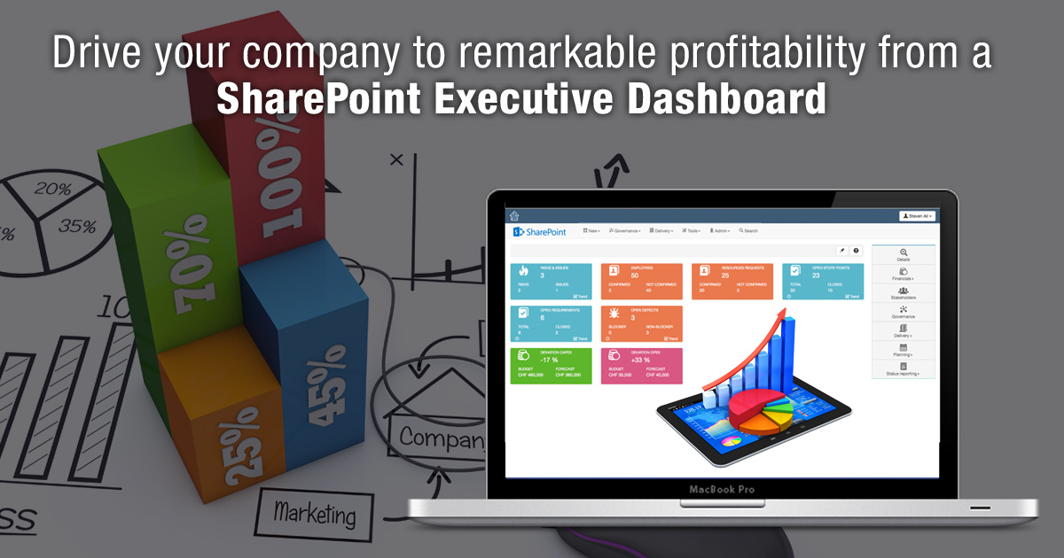 Drive Your Company to Remarkable Profitability from a SharePoint Executive Dashboard