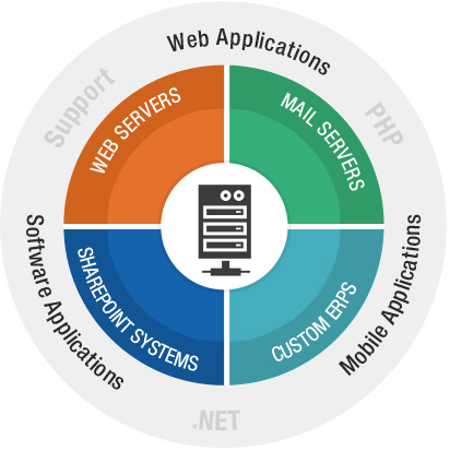 web servers, mail servers, SharePoint systems and Custom ERPs