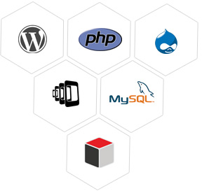 PHP Web & LAMP Development Services